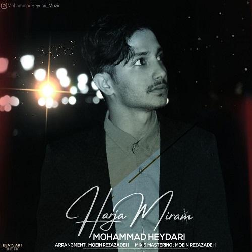 دانلود موزیک جدید محمد حیدری هرجا میرم