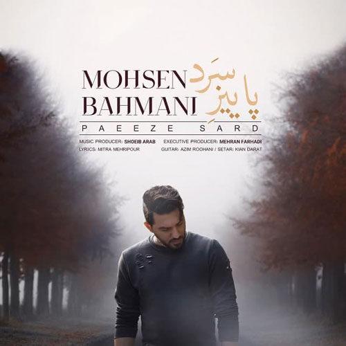 دانلود موزیک جدید محسن بهمنی پاییز سرد