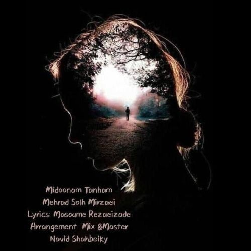 دانلود موزیک جدید مهراد صلح میرزایی میدونم تنهام